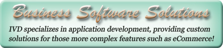 Custom Business Software Development